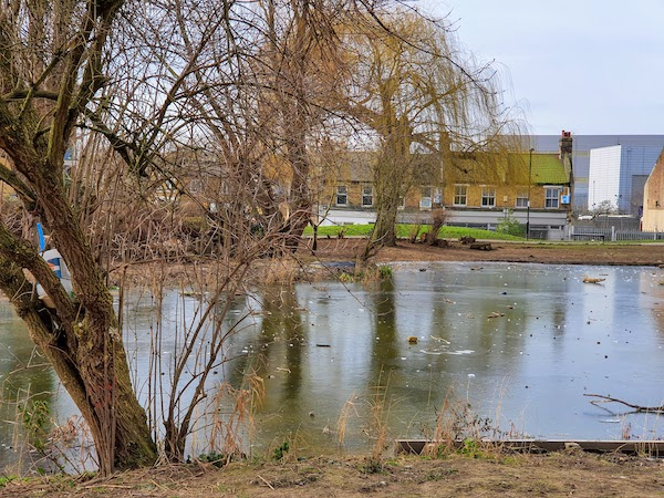 A frozen pond. What Life Looked Like In London During Lockdown